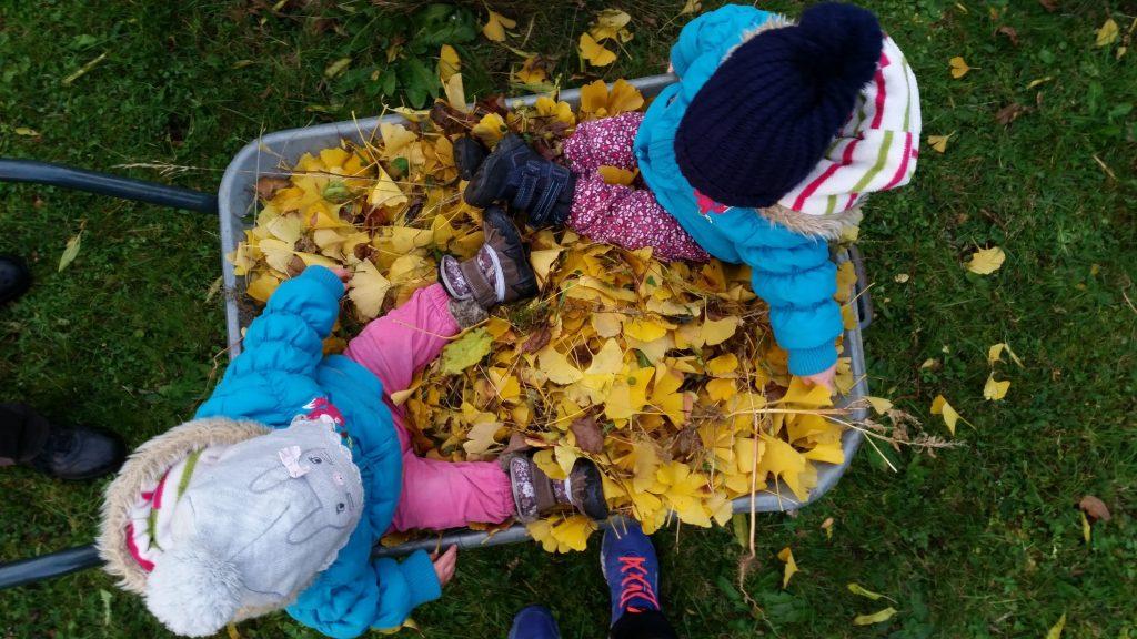 Kleinkinder in einer Scheibtruhe im Herbst