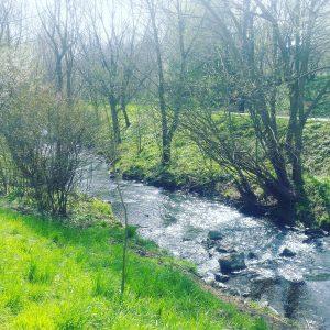 Foto von Landschaft, Laufen