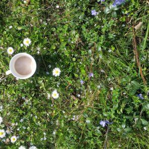 Kaffee im Garten