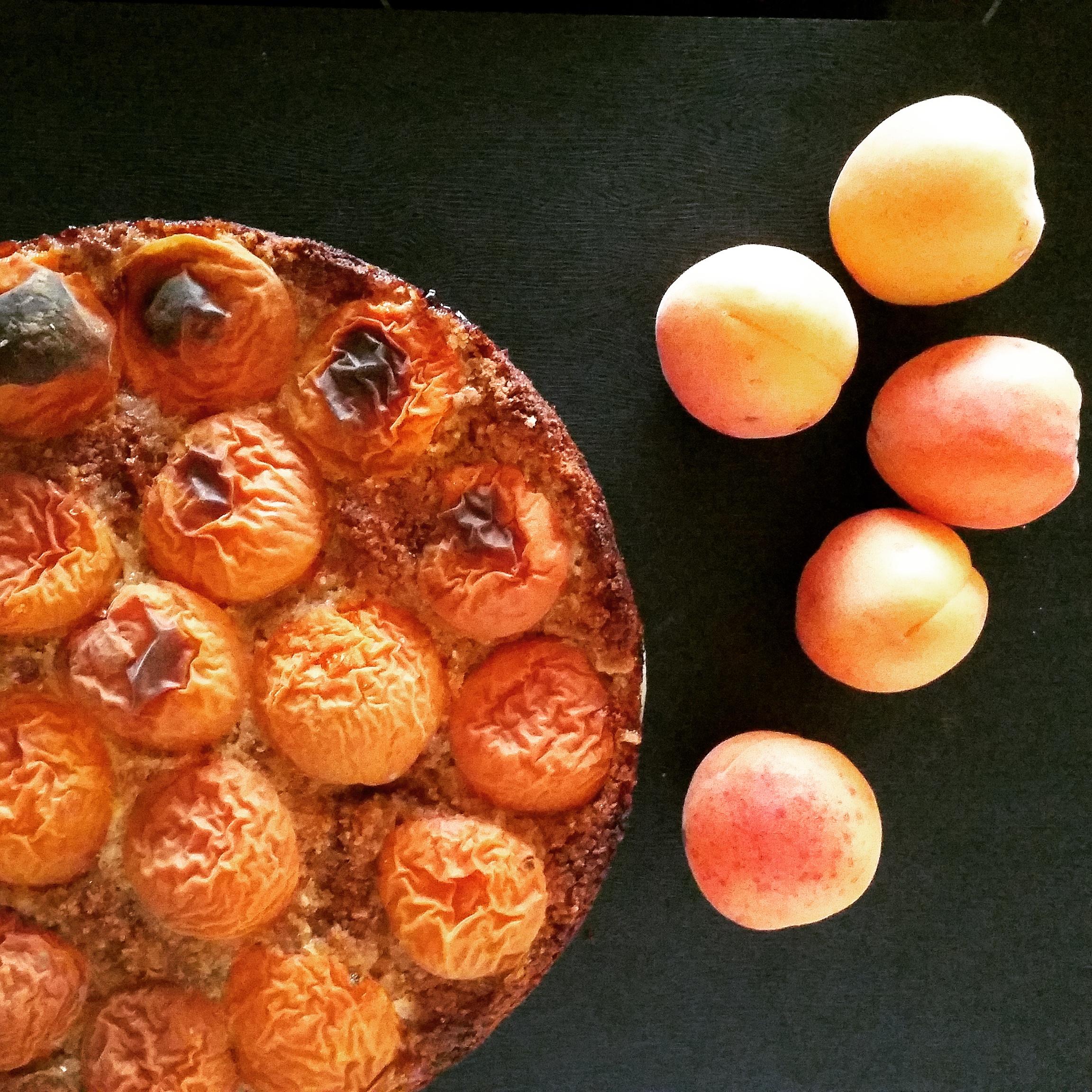 Glutenfreier Marillenkuchen