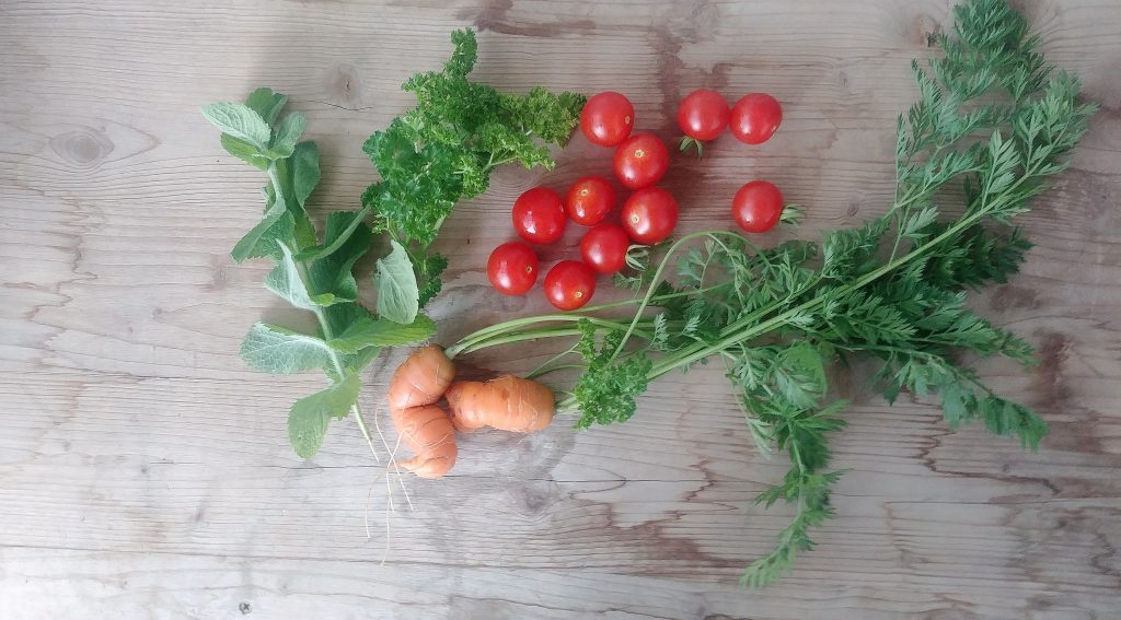 Gartenernte